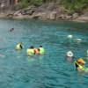 Discover Similan 1 Day Trip