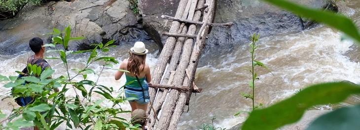 walking on wooden bridge on doi inthanon national park