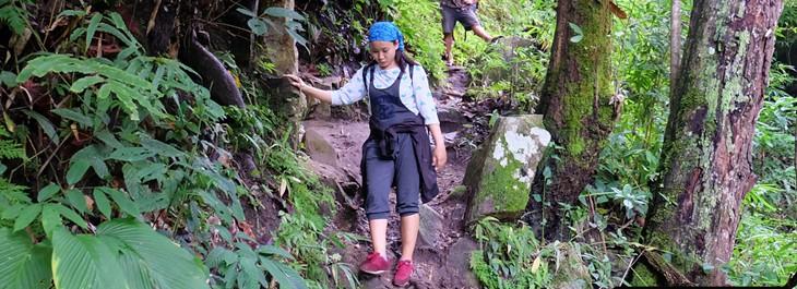 trekking through beautiful rice terraces on doi inthanon national park