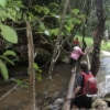 people crossing stream on doi inthanon national park