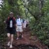 group of people trekking on doi inthanon national park