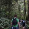 men trekking on doi inthanon national park