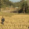 trekking through field