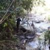 small stream on doi inthanon national park