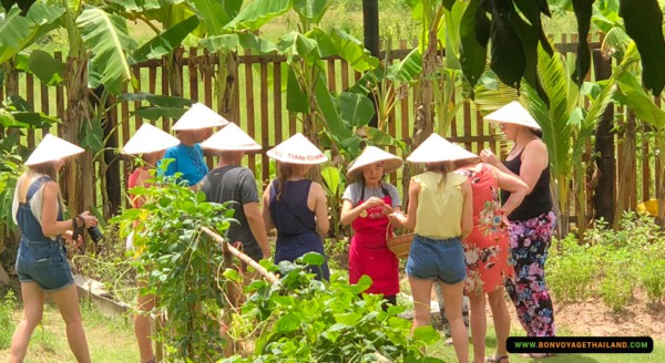 group of people learning about thai herbs
