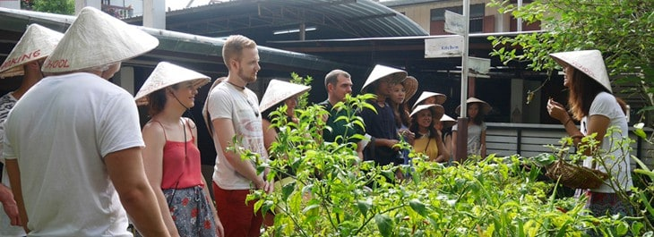 group of people learning about thai herbs and vegetables in kitchen garden
