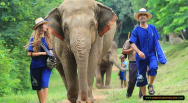 man and woman walking with elephant