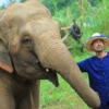 man posing with an elephant in jungle