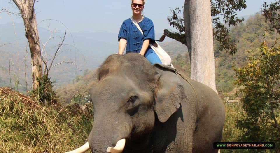 lady in sunglasses bareback elephant riding through forest