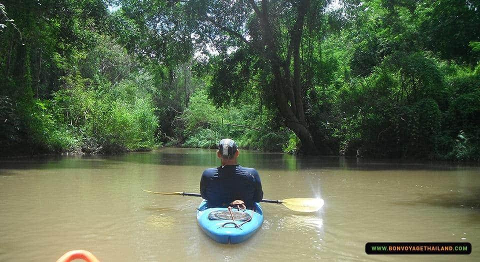kayaking through chiang dao jungle river