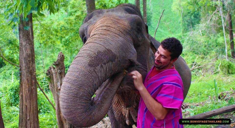 chiang-mai-elephant-sanctuary-and-trekking-1