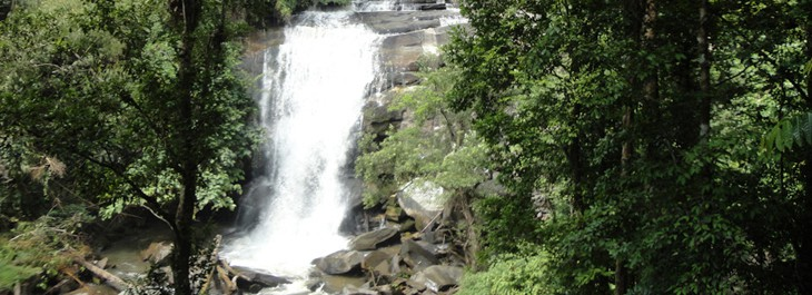 view of waterfall on doi inthanon