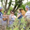 learning about thai herbs in kitchen garden