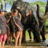 water splashing at kanta elephant sanctuary