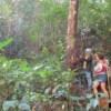 trekking through mae kampong