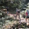 couple and guide trekking through mae kampong