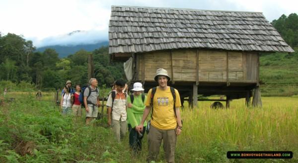 trekking through rice paddy