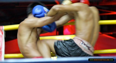boxers boxing inside ring
