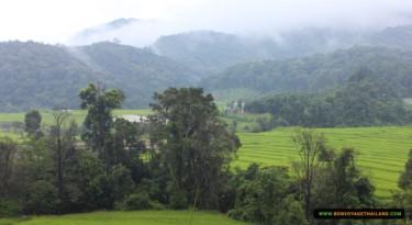 rice terraces at kew mae pan nature trail