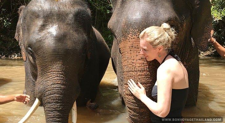 woman giving elephant a bath