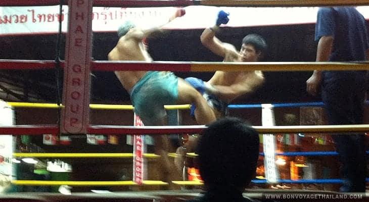 muay thai - thai boxing