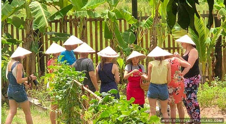 learning about tropical herbs and vegetables in kitchen garden