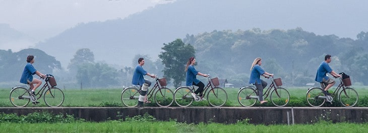 group of people cycling along rice paddy in the country