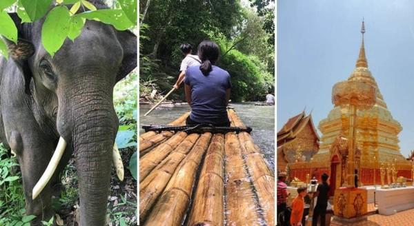 Doi Suthep Temple + Bamboo Rafting + Elephant Sanctuary