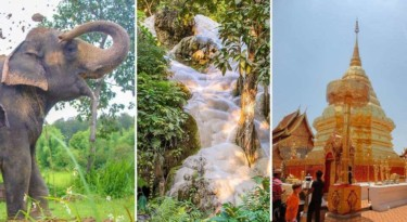 Doi Suthep Temple + Sticky Waterfall + Elephant Sanctuary