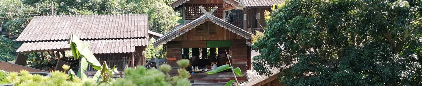 Eco Tours and Lodge