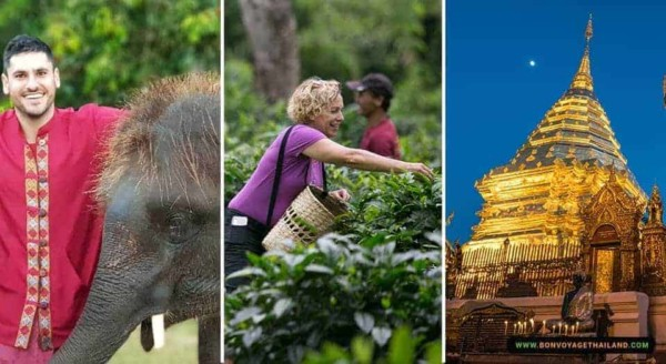 Elephant Sanctuary + Araksa Tea Garden + Doi Suthep Temple (Evening View)