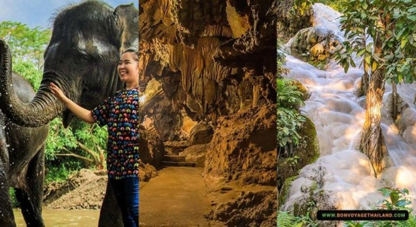 Chiang Mai Kanta Elephant Sanctuary, Chiang Dao Cave, Sticky Waterfalls Pickup and drop-off at your hotel or guesthouse English-speaking tour guide Private Tour ฿4,800 /adult ItineraryWhat we'll doPricesThis Tour Includes