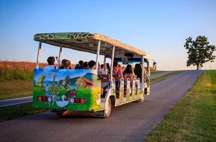 Singha Park Trams