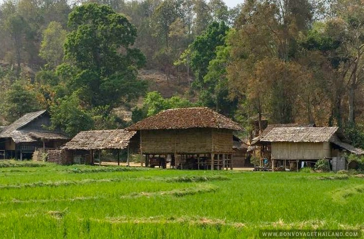 Baan Tong Luang Eco-Agricultural Village